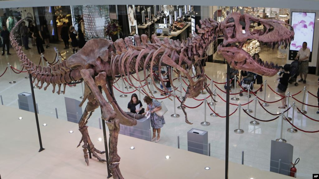 痴翱础慢速英语:科学家揭秘恐龙身形巨大的原因